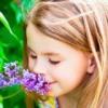 Аллергические реакции на цветение растений