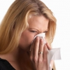 Аллергия на кошек: симптомы и лечение