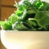 Блюда из шпината кулинарные рецепты постные