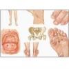 Болезнь Рейтера - лечение, симптомы