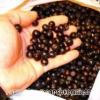 Черноплодной рябины рецепт приготовления