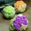 Цветная капуста - полезные свойства