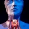 Гипоплазия щитовидной железы у взрослых: лечение, симптомы, причины