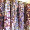 ГМО вредны или пользны для человека, список генетически модифицированных продуктов
