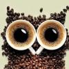 Из кофейных зерен поделки: мастер-классы по созданию необычных и красивых изделий своими руками