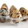 Яйца перепелиные - польза, лечение