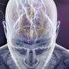 Эпилепсия: причины, первые симптомы, лечение