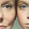 Как повысить эластичность кожи с помощью продуктов питания и масел