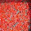 Как правильно принимать ягоды Годжи?