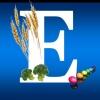 Как принимать витамин Е: инструкция и правильная дозировка