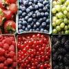 Как варить кисель из ягод?