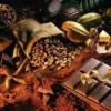 Какао порошок, бобы, масло: какая польза и вред от них