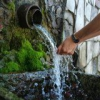 Какими свойствами обладает родниковая вода