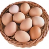 Куриное яйцо плюсы и минусы в питании