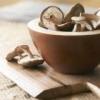 Лечебные свойства грибов шии-таке