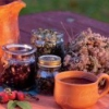 Лечение эрозии желудка народными средствами, лекарственными травами