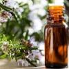 Масло розмарина: свойства и применение для здоровья, улучшения волос и кожи