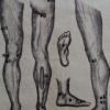 Массаж рефлексогенных зон ног