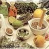Народные методы лечения заболеваний кишечника