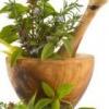 Народные средства для лечения гарднереллеза