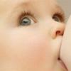 Образование грудного молока у женщины