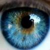 Определение болезни по радужке глаза человека