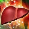 Осложнение цирроза печени гепаторенальный синдром