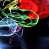 Особенности лечения дисциркуляторной энцефалопатии 1 и 2 степени
