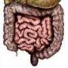 Острая функциональная кишечная непроходимость у детей