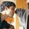 От домашних кошек возможно заражение человека бычьим видом туберкулеза