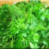 Полезные свойства свежей зелени