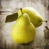 Польза груши для здоровья человека