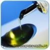 Польза льняного и оливкового масла для похудения