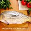 Польза речной рыбы для организма человека