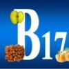 Польза витамина В17 для здоровья человека