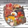 Повышенный холестерин в крови - мифы и реальность