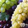 При каких болезнях полезен виноград?