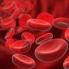 Причины появления болезни анемия