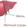 Причины симптомы и лечение холецистита
