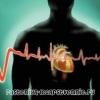 Продукты полезные для сердца и сосудов, что вредно сердцу