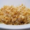 Пророщенная пшеница: употребление, польза, свойства