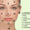 Прыщи на лице: за какие органы отвечают высыпания на лбу и щеках, вокруг носа и губ?