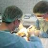 Пупочная грыжа операция, после операции