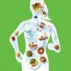 Рациональное питание и здоровье человека. Продукты рационального питания