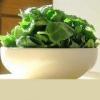 Растение шпинат полезные свойства и применение