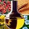 Растительное масло полезные свойства