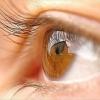 Ребенок начал часто моргать глазами. Что это может быть?