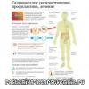 Сальмонеллез – симптомы, лечение, инкубационный период, осложнения
