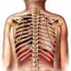 Средства лечения перелома рёбер