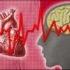 Стенокардия: симптомы, причины, первая помощь при стенокардии
